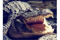 """Неповторимая экзотическая панель-крышка обтянутая кожей крокодила с фактурным тиснением для xiaomi mi5 тематика """"тропический коктейль"""". только в нашем магазине. количество ограничено."""