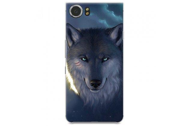 """Задняя панель-крышка-накладка из тончайшего и прочного пластика для blackberry keyone/ dtek70 """"тематика дикий волк"""""""