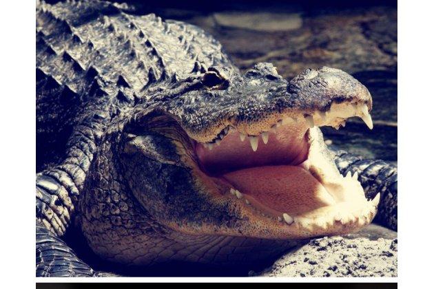 Роскошный эксклюзивный чехол с объёмным 3d изображением рельефа кожи крокодила коричневый для nokia 3 только в нашем магазине. количество ограничено